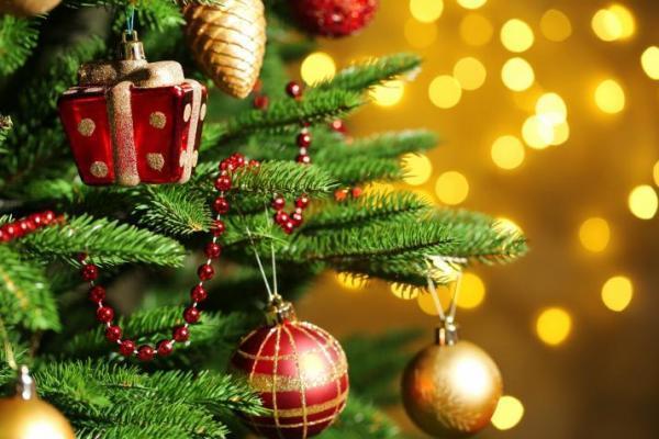 """Результат пошуку зображень за запитом """"новогодняя елка"""""""